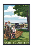 Amish Country - Field Scene