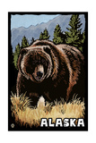 Alaska - Grizzly Bear - Scratchboard