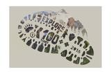 National Park Service Centennial - Footprint