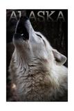 Alaska - Wolf Howling