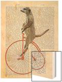 Meerkat on Orange Penny Farthing