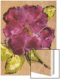 Camellia Passion I