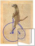 Meerkat on Blue Penny Farthing