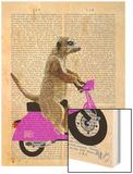 Meerkat on Pink Moped