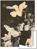 Floral Portrait VI