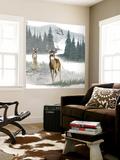 Lodge Landscape II