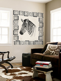 Safari Zebra II
