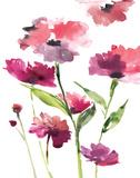 Razzleberry Blossoms