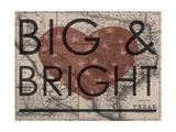 Big & Bright - 1864  Texas Mitchell Plate  Texas  United States Map