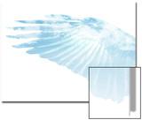 Wings in the Sky  Vice Versa