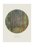 Old Masters  New Circles: Tannenwald (Pine Forest)  c1902