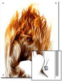 Beautiful Hair  Burning Flame