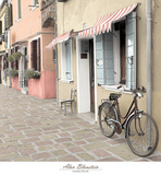 Venetian Bicycle