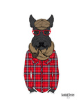 Scottish Terrier in Pin Plaid Shirt