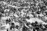 Reading Pop Festival  1971
