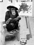 Artist Chimp 1955