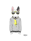 Bull Terrier in City Style