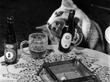 Dog Acts as a Waiter 1965