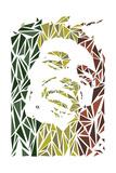 Bob Marley Reproduction d'art par Cristian Mielu