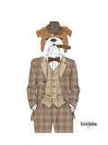 British Bulldog in Tweed Suit