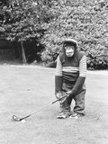 A Chimpanzee playing a round of golf