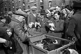 Bethnal Green Wast London Street Pet Market 1946