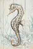 Antique Sea Horse II