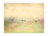 Seagulls in the Sky I