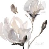 Tonal Magnolias I