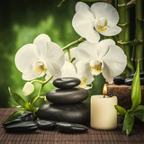 Spa Concept with Zen Basalt Stones and Orchid