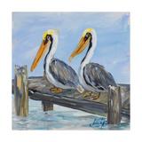 Pelicans on Deck