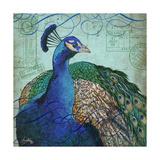 Parisian Peacock I Reproduction d'art par Elizabeth Medley
