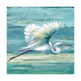 Great Egret I