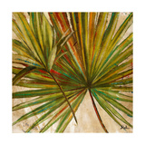 New Palmera Take Two I