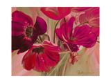 Violet Primavera II