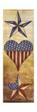 America Stars II Giclée premium par Elizabeth Medley