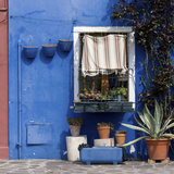 Pot Plants on Blue Painted Venice Building Exterior