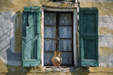 Typical French Window  with Turquoise Wooden Shutters and Terracotta Jug