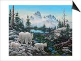 Alpine Country