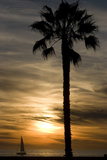 Sunset  Santa Monica Beach