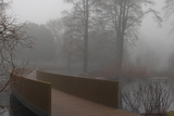 Royal Botanic Gardens  Kew  London the Sackler Crossing in Fog with Winter Trees