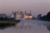 Chateau De Chambord Park - Val De Loire  France