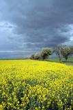 Oberlausitz  Landscape - Germany