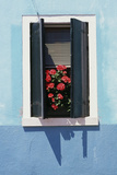 Windowwith Venetian Blinds and Shutters on Blue Wall - Burano  Venice