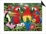 Tropical Friends