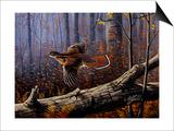 Windfall Glider - Ruffed Grouse