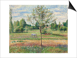 Meadow with Grey Horse  Eragny; Le Pre Avec Cheval Gris  Eragny  1893