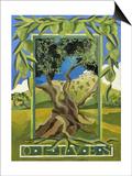 Green Olives  2014