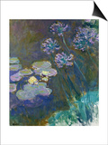 Waterlilies and Agapanthus  1914-17