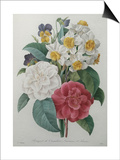 Bouqet of Camellias  Narcisses and Pansies